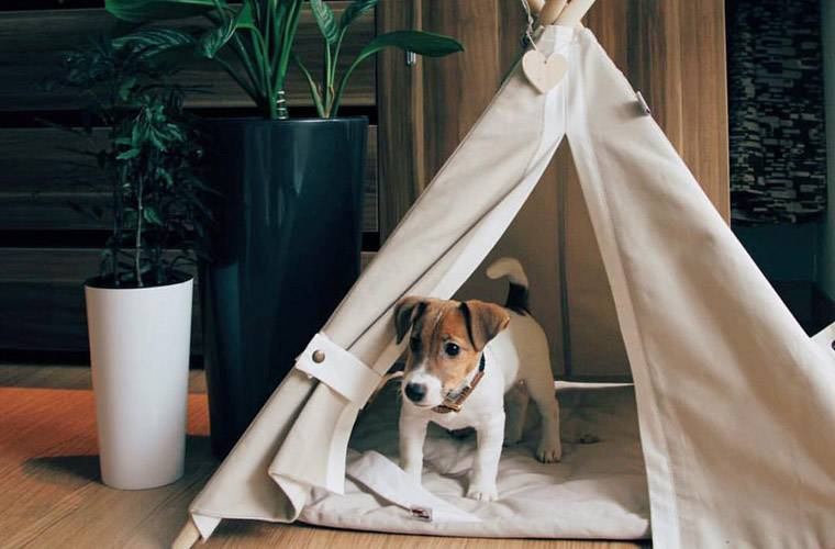 Happy Teepee